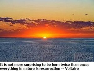 Sunrise Over The Ocean With A Voltaire Quote - Awakening Alchemy