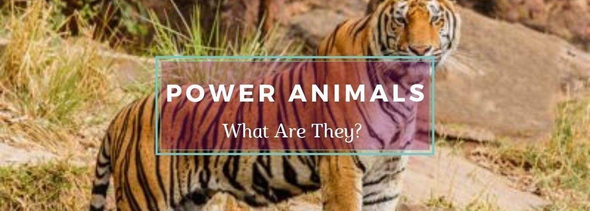 Free Tiger on a Power Animals Banner - Awakening Alchemy