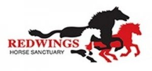 Redwings Horse Sanctuary Corporate Logo (Black and Red Horse) - Awakening Alchemy