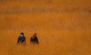 Two Women Walking Through a Wheat Field - Awakening Alchemy