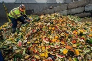 Enormous Mound of Wasted Food - Awakening Alchemy